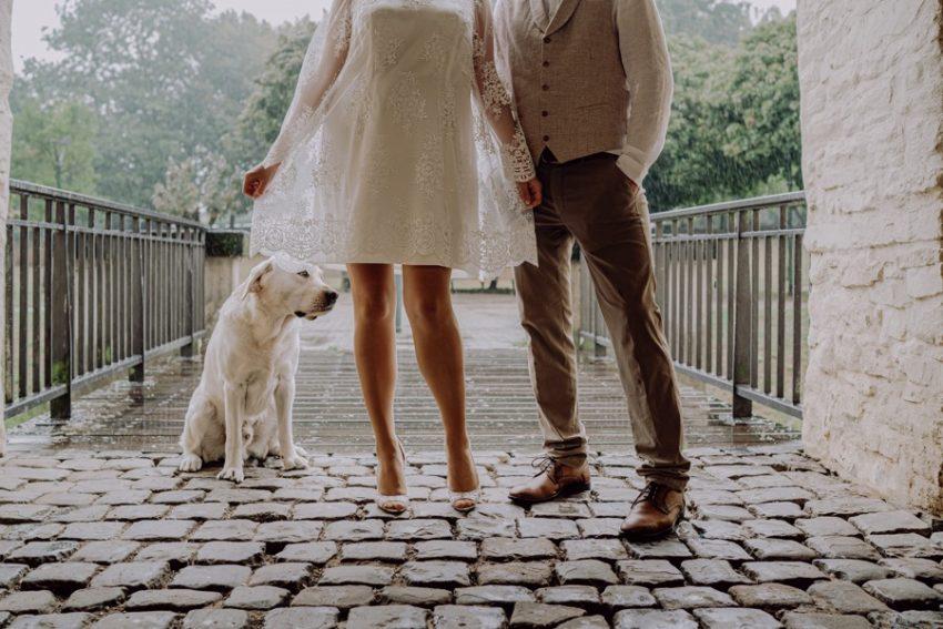 Brautpaar, Hund, Brautpaarshooting, Schnappschuss, Standesamtliche Trauung, Foto Kleer